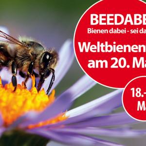 Beedabei – Unsere Bienenwoche